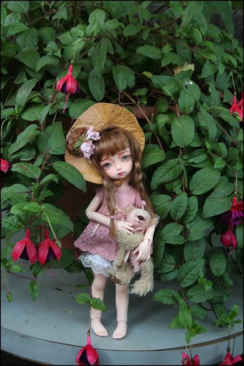 Phoebe3